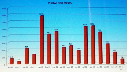 Grafico visitas-2