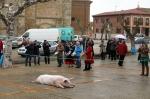 Musica y cerdo