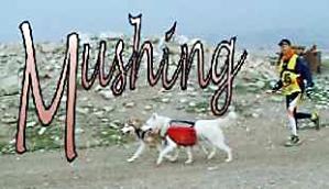 mushing-i01