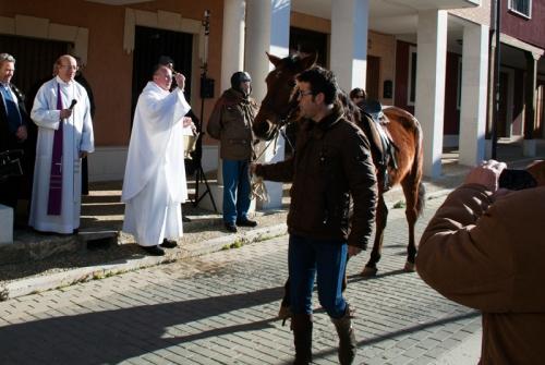Bencicion caballo