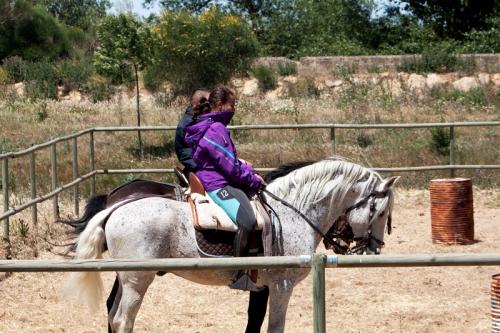 Dos caballos